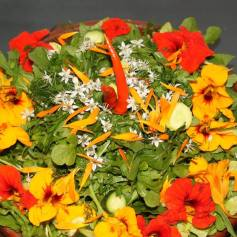 Een salade verijkt met eetbare bloemen